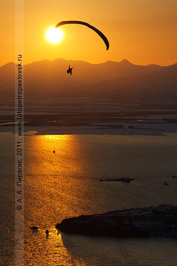Фотография: полет параплана над Авачинской губой (бухтой) на закате солнца
