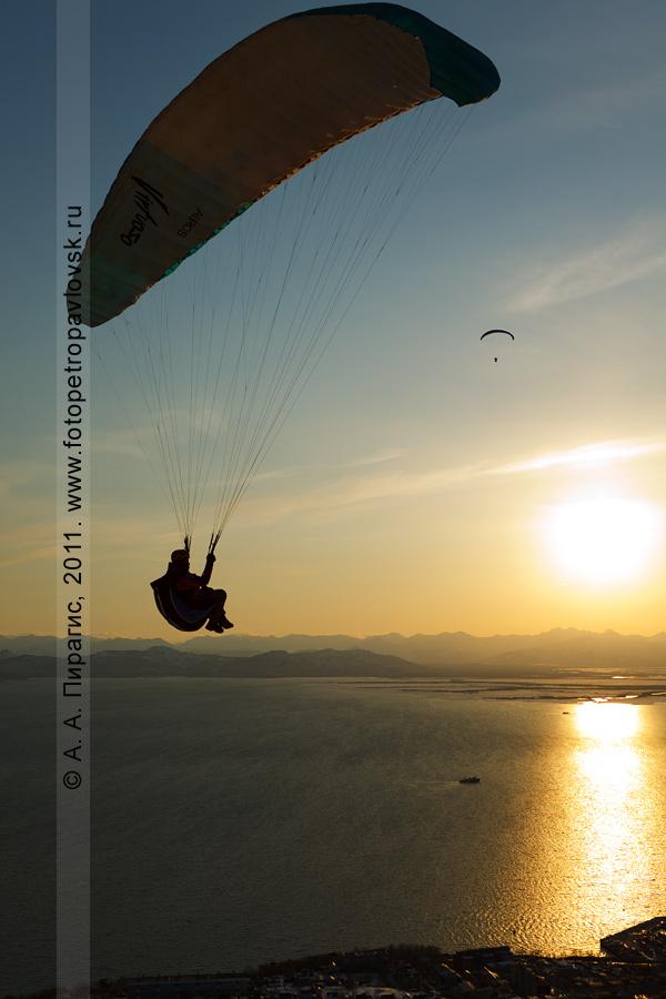 Фотография: полет парапланов над Авачинской губой (бухтой), городом Петропавловском-Камчатским