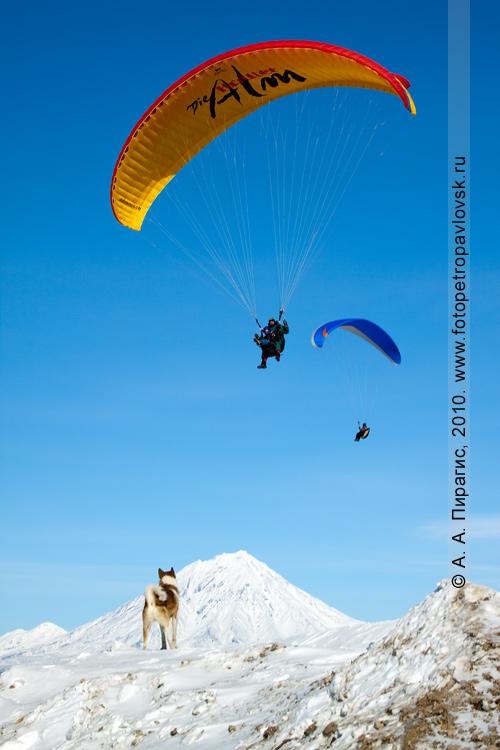 Фотография: полет камчатских парапланеристов
