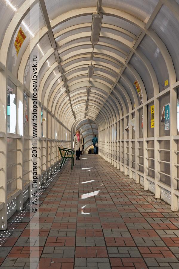 Фотография: надземный пешеходный переход через улицу Ленинградскую в районе Комсомольской площади в городе Петропавловске-Камчатском. Пол надземного пешеходного перехода освещает солнце через выломанные отверстия в пластиковых стенах