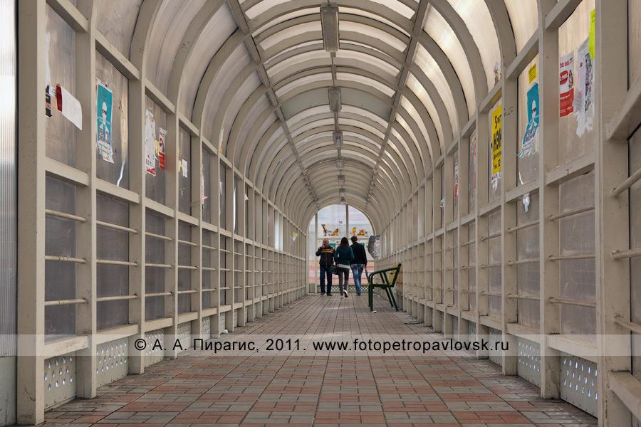 Фотография: интерьер надземного пешеходного перехода на Комсомольской площади. Город Петропавловск-Камчатский, улица Ленинградская
