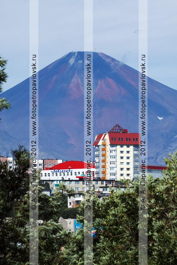 Фотография: столица Камчатского края — город Петропавловск-Камчатский на фоне Авачинской сопки (Авачинский вулкан)