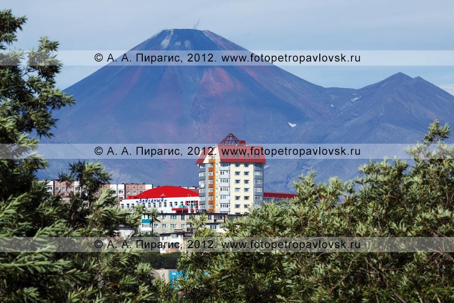 Фотография: Петропавловск-Камчатский на фоне действующего вулкана Камчатки — Авачинского