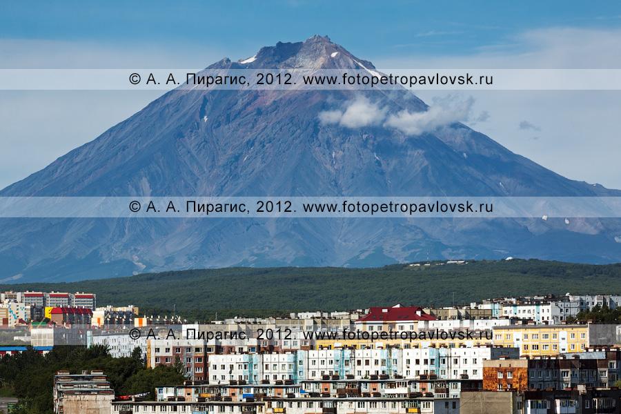 Фотография: вид на Петропавловск-Камчатский и Корякский вулкан (Корякская сопка)