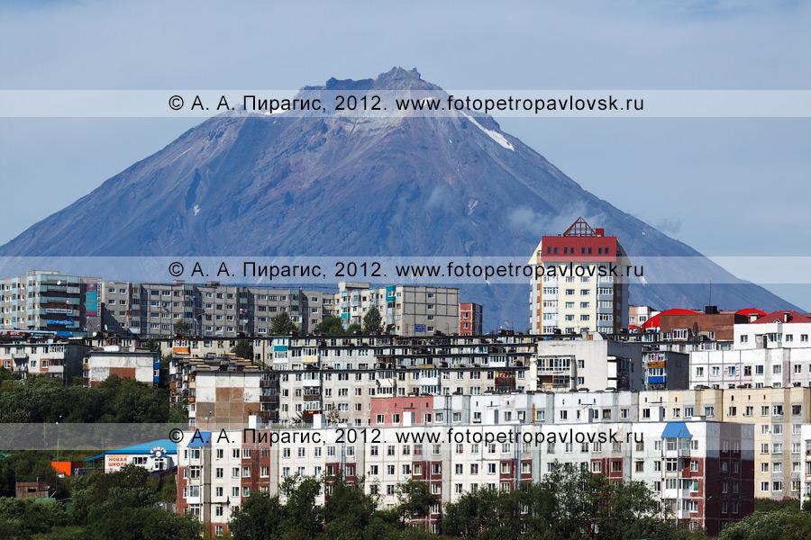 Фотография: столица Камчатского края — город Петропавловск-Камчатский на фоне Корякской сопки (Корякский вулкан)
