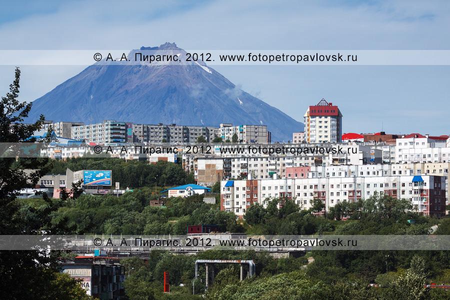 Фотография: Петропавловск-Камчатский на фоне действующего вулкана Камчатки — Корякского