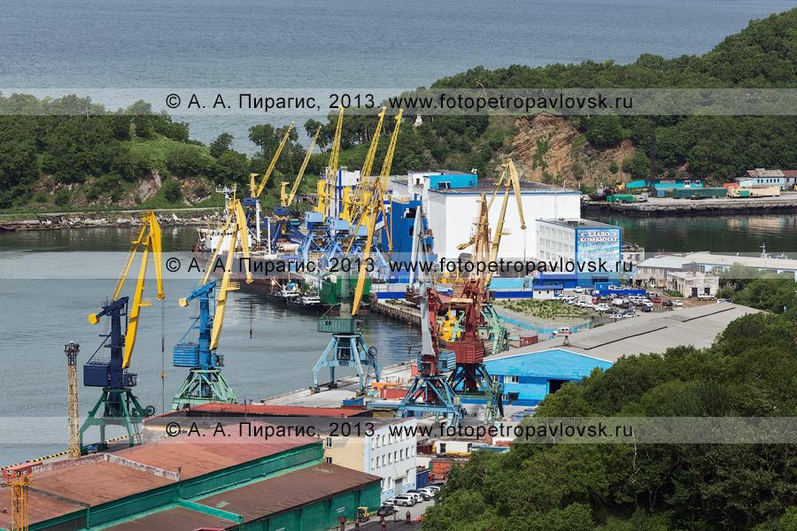 Фотография: вид на причалы № 4 и 5 Петропавловск-Камчатского морского торгового порта; пустырь на месте, где было здание морского вокзала (Петропавловск-Камчатский)
