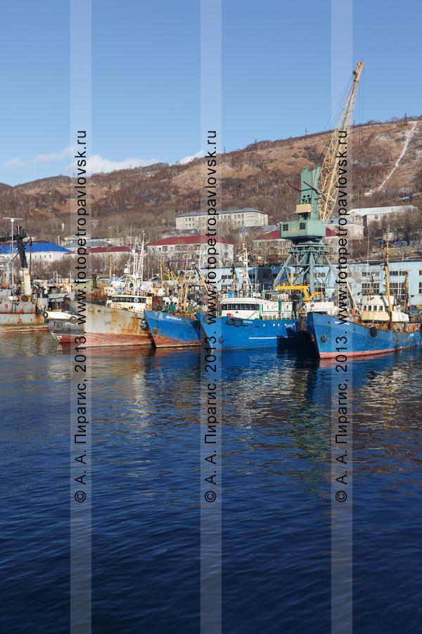 Фотография: город-порт Петропавловск-Камчатский, суда, стоящие в городском порту. Камчатский край
