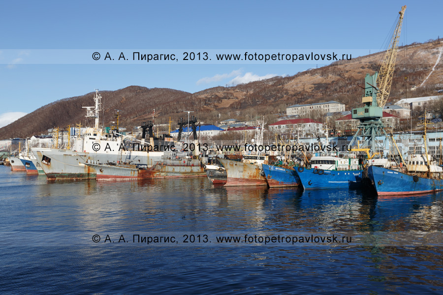 Фотография: город-порт Петропавловск-Камчатский, суда, стоящие у причала в городском порту. Камчатский край