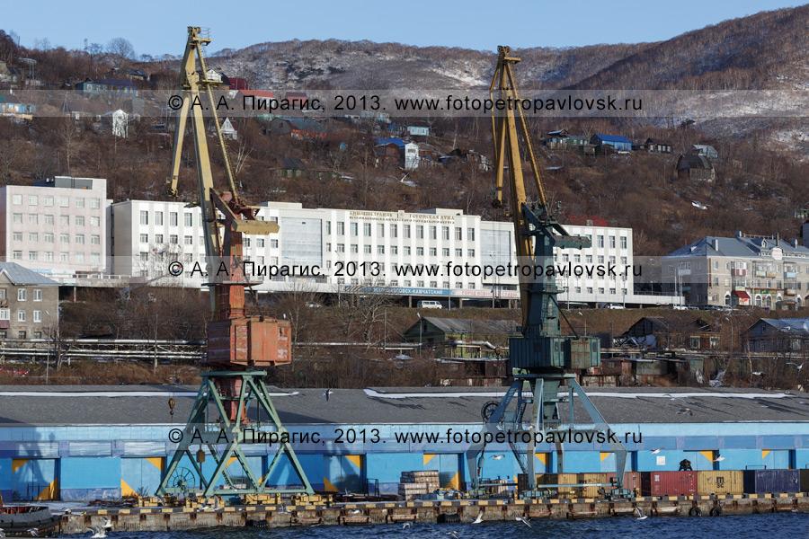 Фотография: портовые краны на фоне здания администрации и Городской думы Петропавловска-Камчатского. Камчатский край