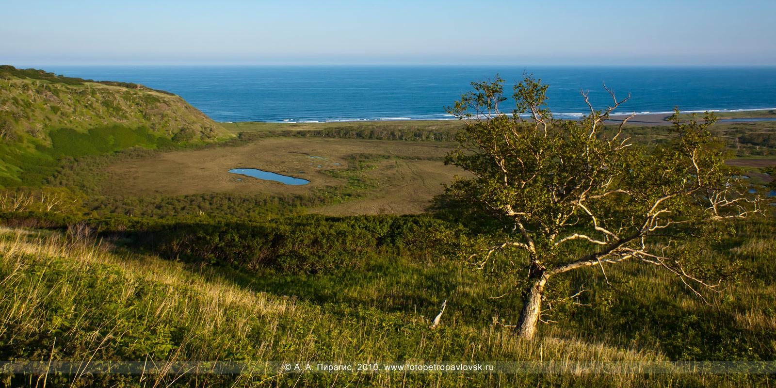 Фотография: панорама — берег Тихого океана (Авачинский залив), район озера Приливного в окрестностях Петропавловска-Камчатского