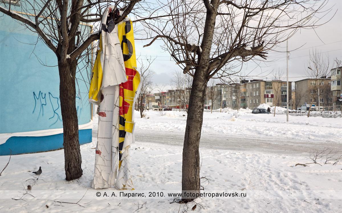"""Фотография: рекламный баннер """"Распродажа"""" на дереве в микрорайоне """"Силуэт"""" Петропавловска-Камчатского."""