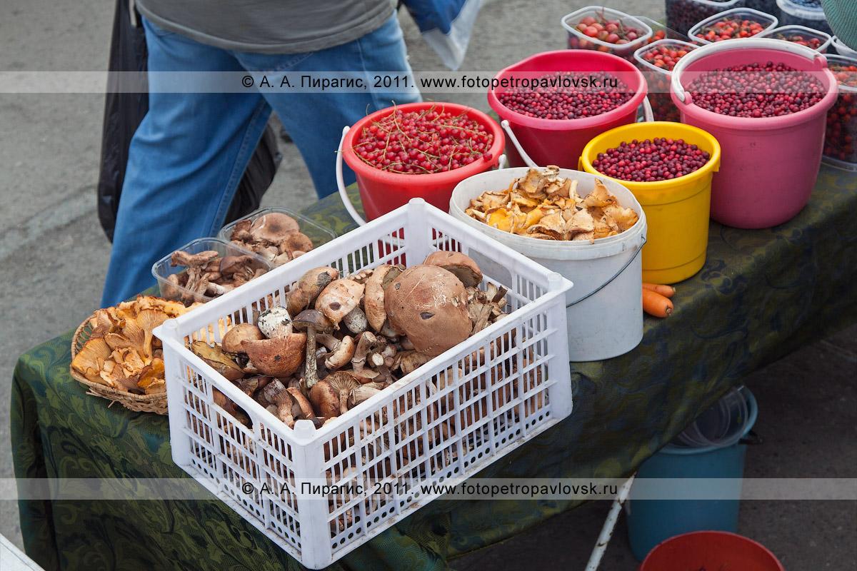 Фотография: в продаже камчатские дикоросы — грибы и ягоды. Камчатский край, город Петропавловск-Камчатский