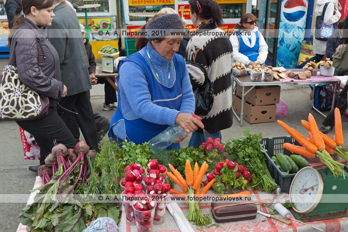 Фотография: торговый прилавок с сельскохозяйственной продукцией. В продаже: свекла, зелень, редиска, морковка, огурцы, произведенные в частном подсобном хозяйстве
