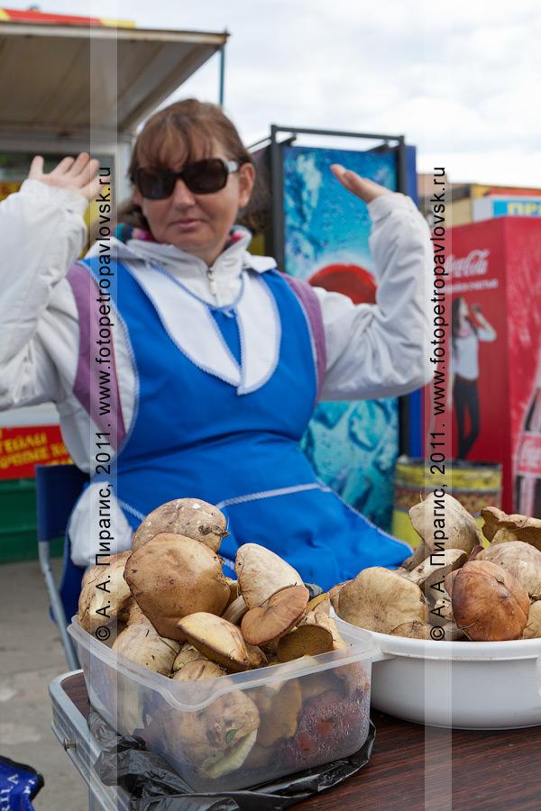 Фотография: в продаже камчатские дикоросы — грибы. Камчатский край, город Петропавловск-Камчатский