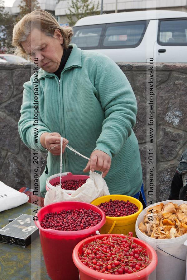 Фотография: продавец камчатских дикоросов. Город Петропавловск-Камчатский, стихийный продовольственный рынок на проспекте 50 лет Октября