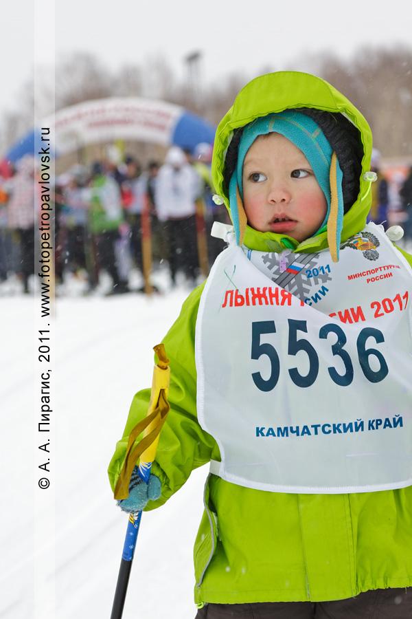 skis-5.jpg
