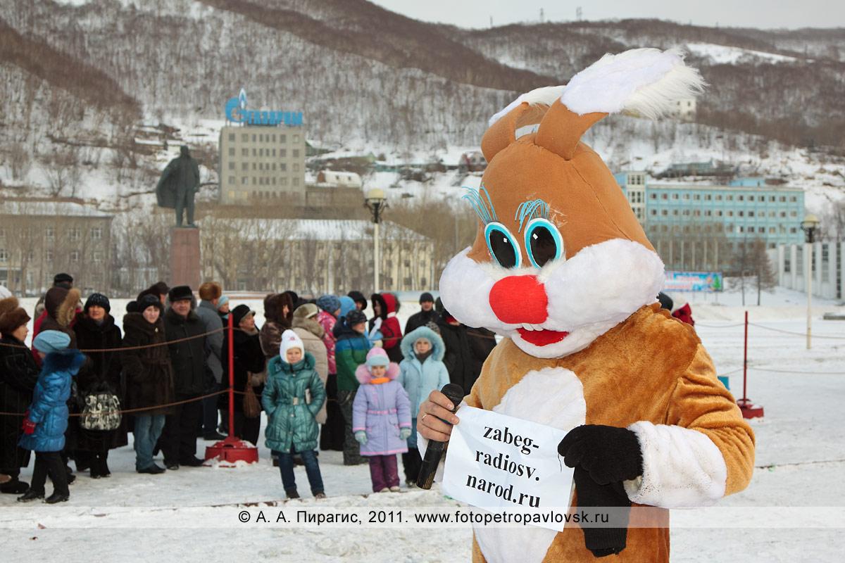 """Фотография: кролик — символ 2011 года. Конкурс для зрителей от сотовой компании """"Мегафон"""""""