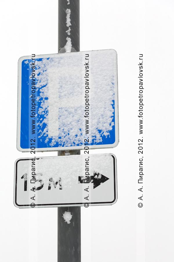 """Фотография: снегопад. Дорожный знак """"Место стоянки"""" и табличка """"15 м""""в снегу"""