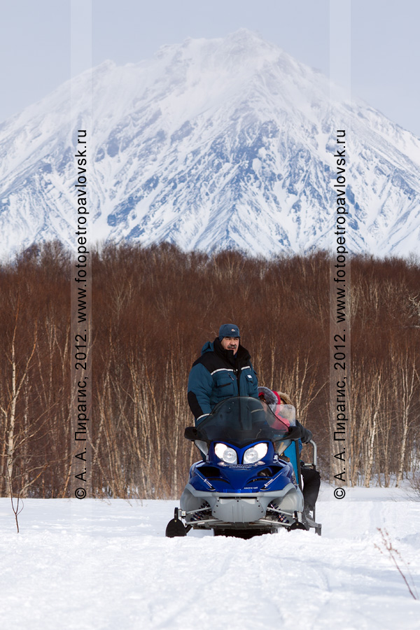 Фотография: снегоход с нартами едет по лесу на фоне Корякского вулкана. Полуостров Камчатка