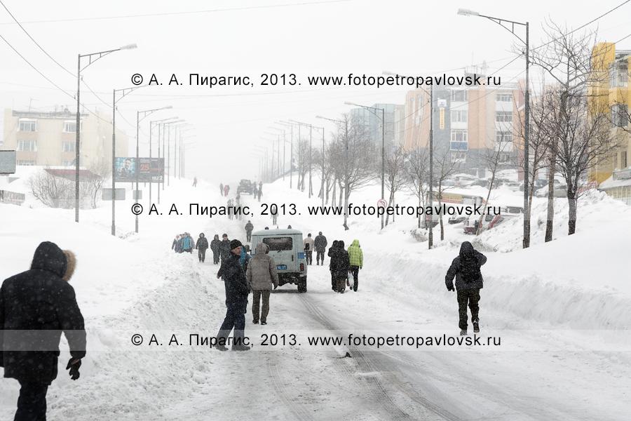 """Фотография: последствие снежного циклона. """"Красная линия"""" закрыта для общественного транспорта, люди идут пешком. Петропавловск-Камчатский, проспект 50 лет Октября"""