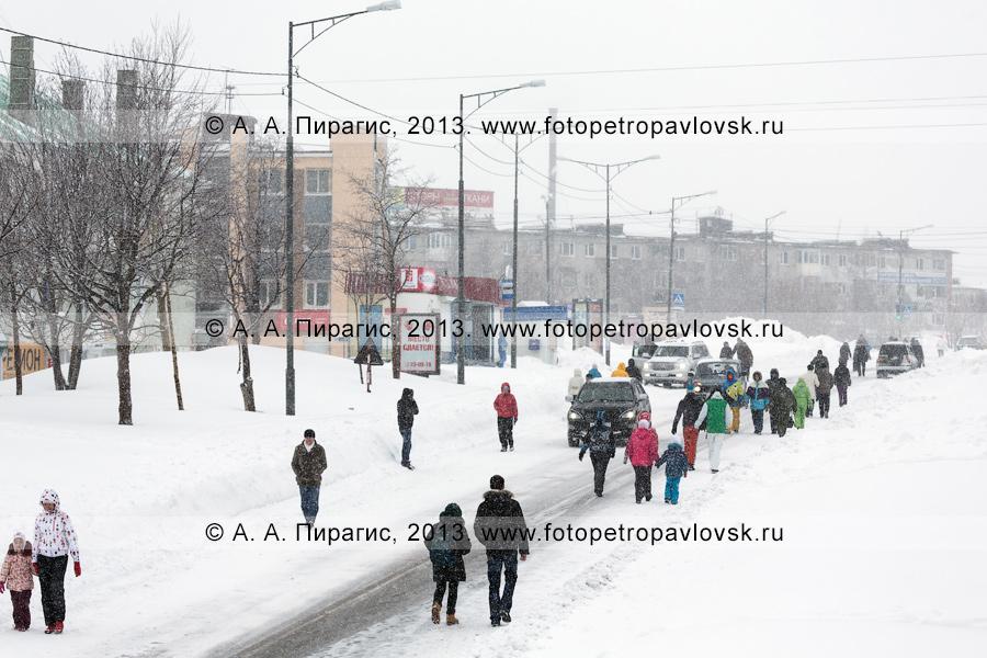 """Фотография: последствие снежного циклона. Автобусы в Петропавловске-Камчатском не ходят, горожане идут пешком по дороге. Петропавловск-Камчатский, район """"Силуэт"""""""