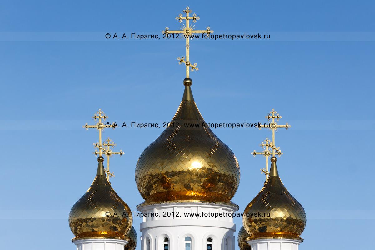 Фотография: купола Свято-Троицкого кафедрального собора. Полуостров Камчатка, город Петропавловск-Камчатский