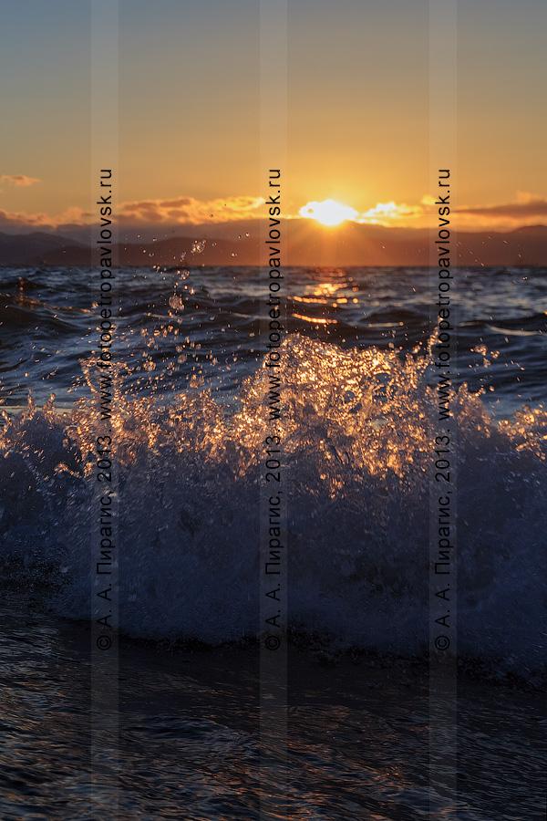 Фотография: волна и брызги Авачинской бухты (Авачинской губы) на закате. Камчатка