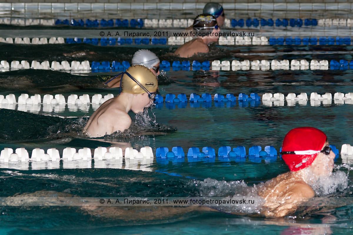 Фотография: кубок Камчатского края по плаванию. Бассейн на 9-м километре, СДЮСШОР по плаванию (Петропавловск-Камчатский)