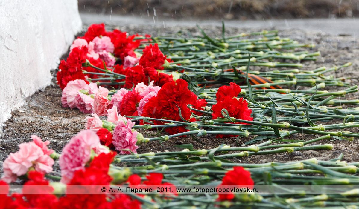 Фотография: цветы у памятника танку Т-34 в городе Петропавловске-Камчатском
