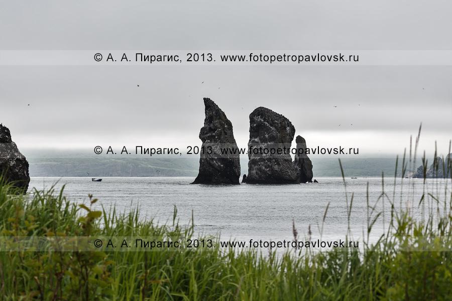 Фотография: памятник природы Камчатки скалы Три Брата в пасмурную погоду