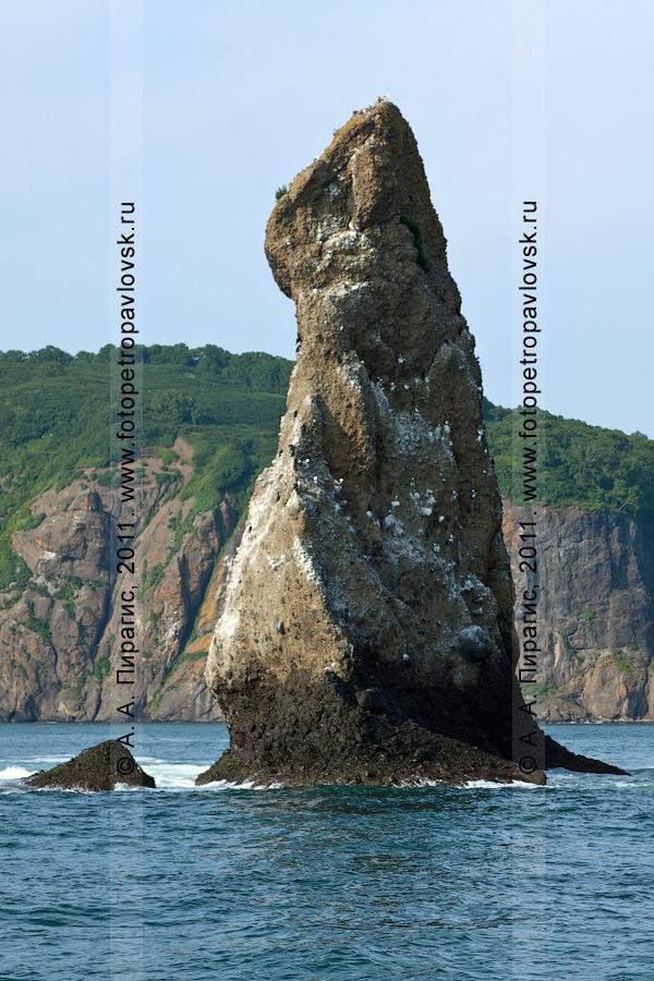 Фотография: левая скала из группы скал Три Брата. Бухта Шлюпочная, Авачинская губа (бухта), полуостров Камчатка