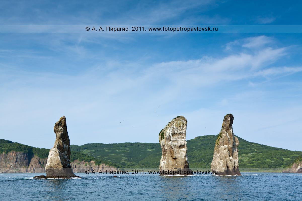 Фотография: пейзаж Камчатки — скалы Три Брата, бухта Шлюпочная, Авачинская губа (Авачинская бухта), полуостров Камчатка