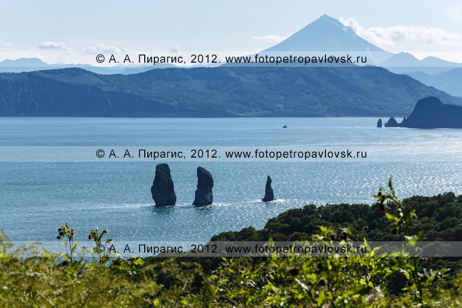 Фотография: камчатский пейзаж — вид на скалы Три Брата в Авачинской губе (Авачинская бухта) и Вилючинский вулкан (Вилючинская сопка)