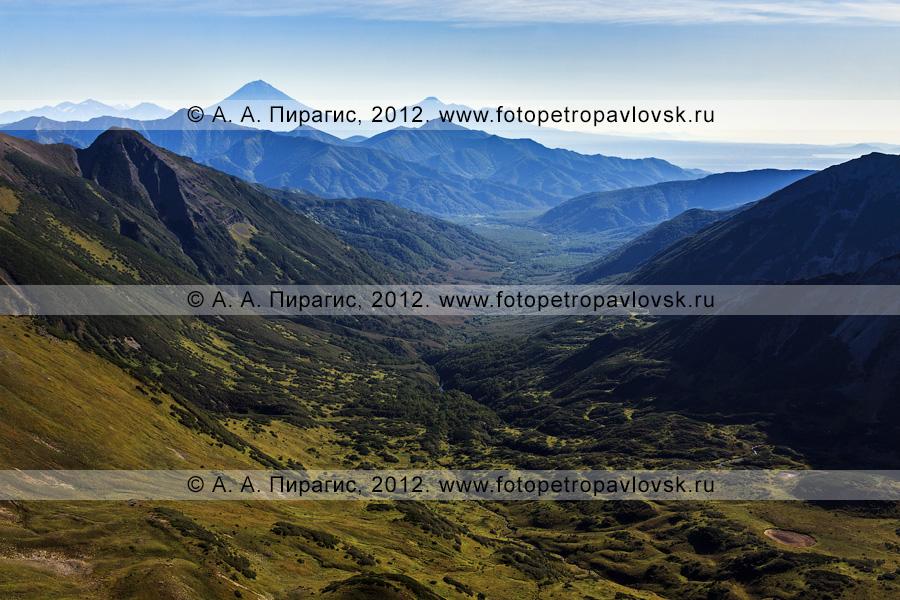 """Фотография: вид на """"домашние"""" вулканы с горного массива Вачкажец (вулкан Вачкажец). Полуостров Камчатка, Южно-Быстринский хребет"""