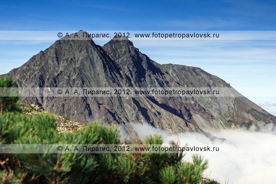 Фотография: горный массив Вачкажец (вулкан Вачкажец). Вид на гору Вачкажцы, или Вачкажицы. Камчатский край, Южно-Быстринский хребет