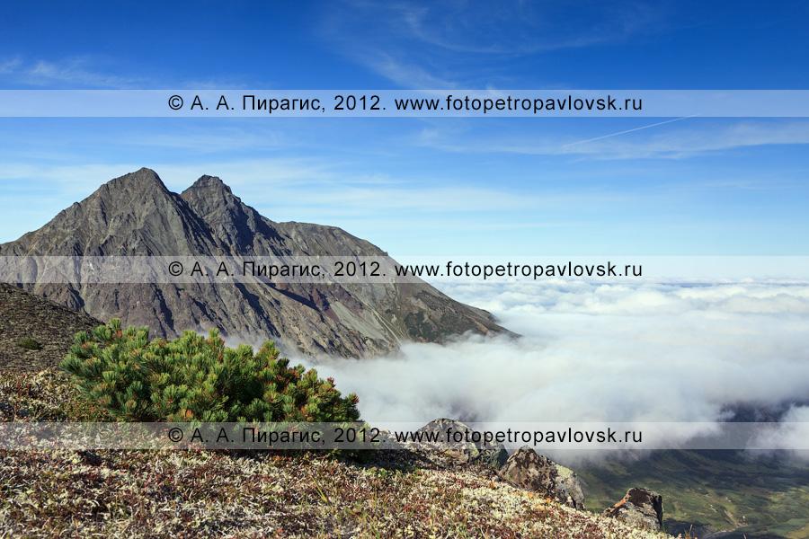 Фотография: гора Вачкажцы, или Вачкажицы. Полуостров Камчатка, Южно-Быстринский хребет, горный массив Вачкажец (вулкан Вачкажец)