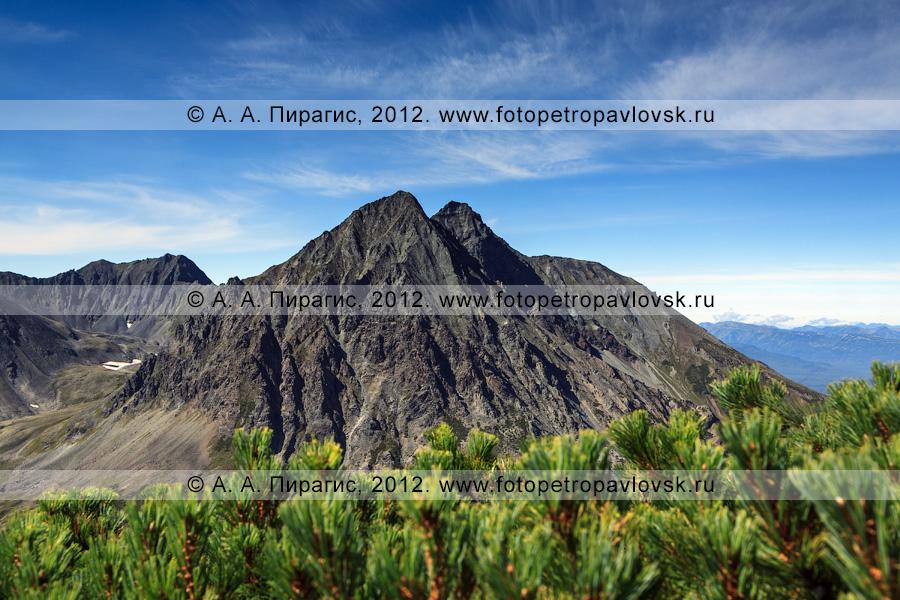 Фотография: вид на гору Вачкажцы, или Вачкажицы. Горный массив Вачкажец (вулкан Вачкажец), Южно-Быстринский хребет, полуостров Камчатка