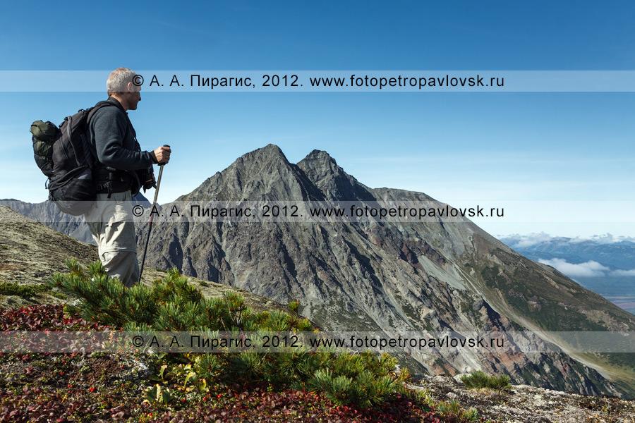 Фотография: камчатский путешественник наслаждается горным пейзажем