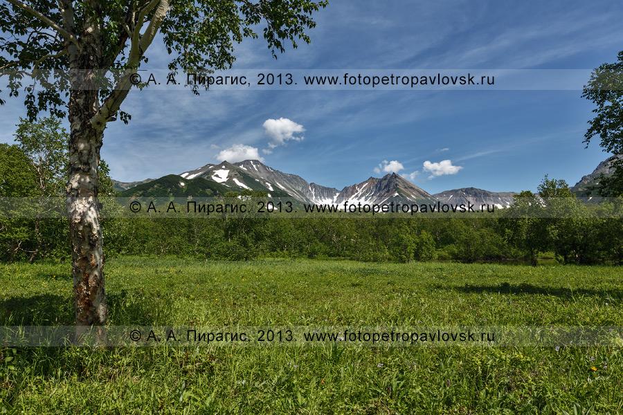 Фотография: летний камчатский пейзаж — вид на горный массив Вачкажец на полуострове Камчатка