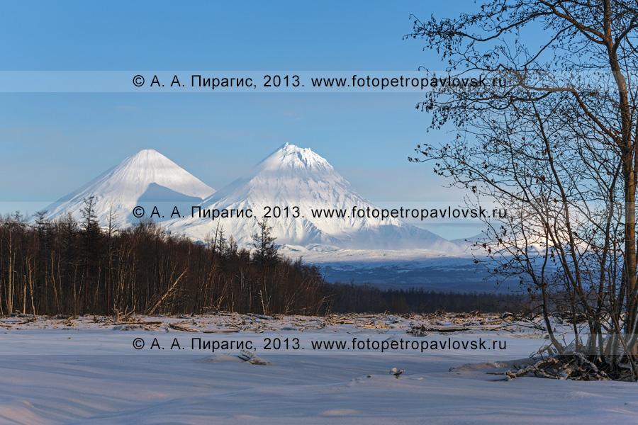 Фотография: вулканы Камчатки — вулкан Ключевская сопка (самый высокий действующий вулкан Азии и Европы) и вулкан Камень. Полуостров Камчатка, Ключевская группа вулканов