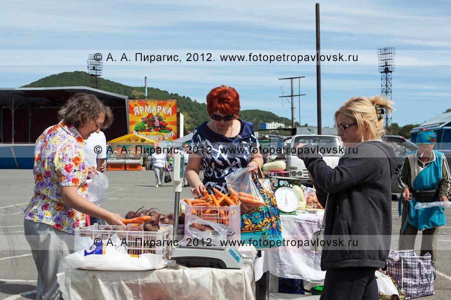 Фотография: покупатели выбирают овощи перед покупкой на сельскохозяйственной ярмарке выходного дня в столице Камчатского края