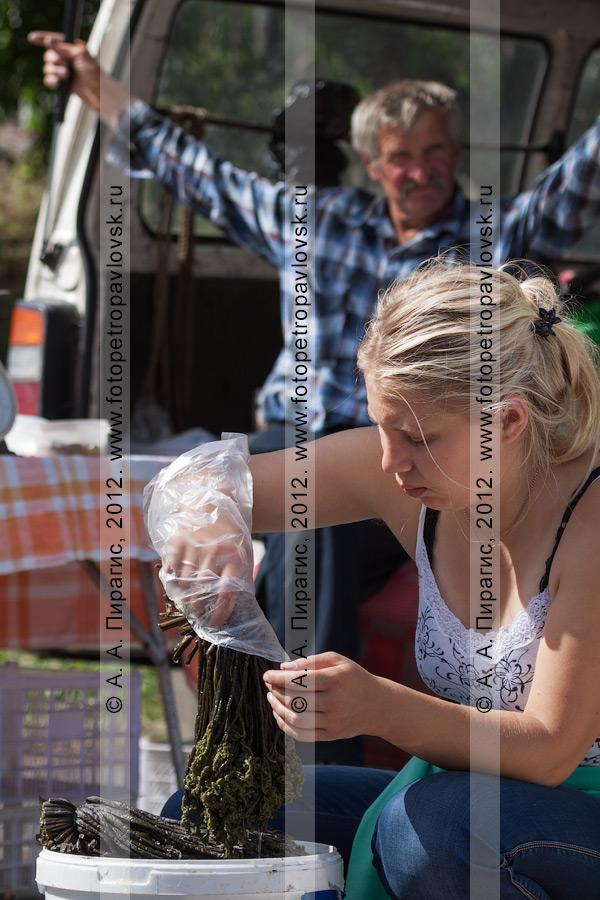 Фотография: продажа соленого папоротника на сельскохозяйственной ярмарке выходного дня в городе Петропавловске-Камчатском