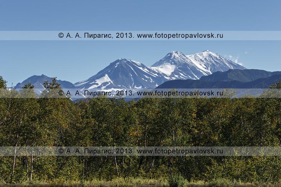 Фотография: активный (действующий) Жупановский вулкан, вид с Налычевской долины. Камчатка