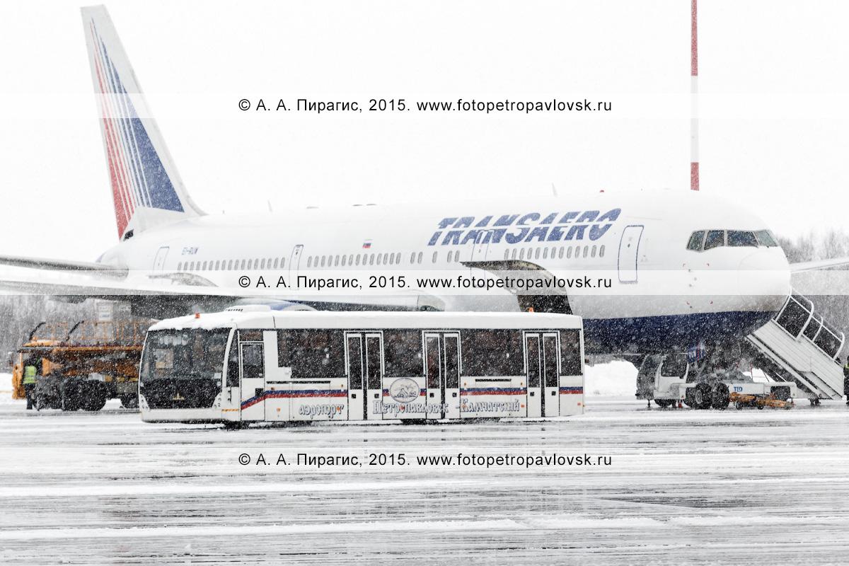 """Аэродромный автобус МАЗ с надписью """"Аэропорт Петропавловск-Камчатский"""" везет пассажиров, прилетевших на Камчатку самолетом Боинг-767 (Boeing-767) авиакомпании """"Трансаэро"""" (Transaero Airlines) во время снегопада"""
