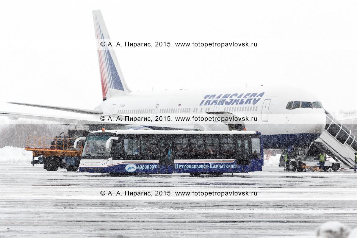 """Снегопад в аэропорту, автобус для перевозки пассажиров в аэропорту везет людей, прилетевших на Камчатку самолетом Боинг-767 (Boeing-767) авиакомпании """"Трансаэро"""" (Transaero Airlines)"""