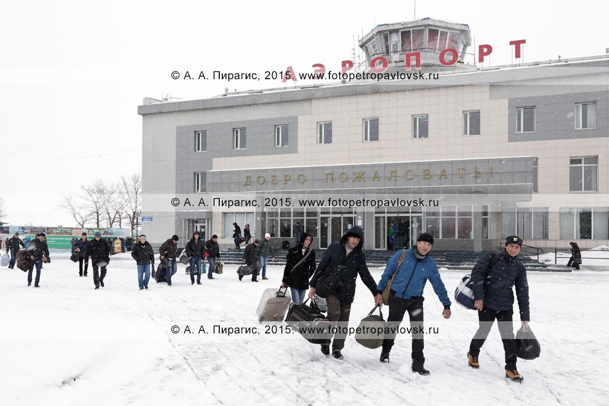 Пассажиры идут с чемоданами на фоне аэровокзала аэропорта Петропавловск-Камчатский (аэропорт Елизово) на полуострове Камчатка