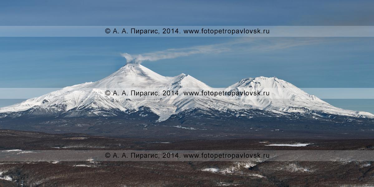 Фотография: камчатский зимний пейзаж — панорама Авачинского вулкана и Козельского вулкана. Полуостров Камчатка