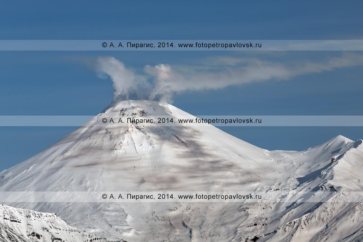 Фотография: сильная фумарольная активность Авачи, вид на конус действующего Авачинского вулкана на полуострове Камчатка