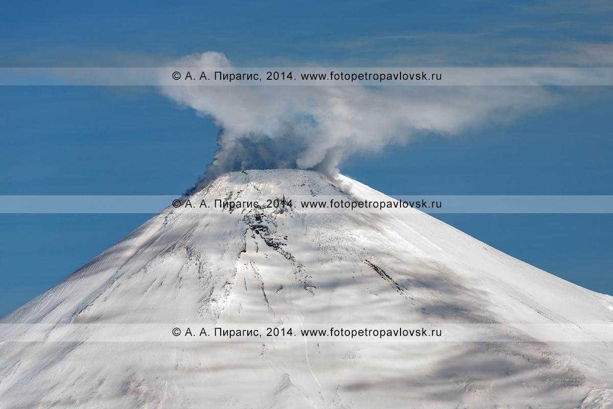 Фотография: Камчатский пейзаж — вид на конус вулкана Авачинская сопка, фумарольная активность Авачи. Полуостров Камчатка